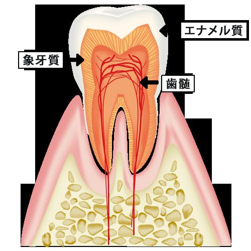 みなと歯科 ホワイトニングの仕組み